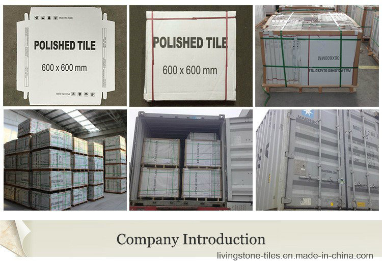 Foshan Factory Newest Cement Design Six Face Ceramic Floor Tile for Airport