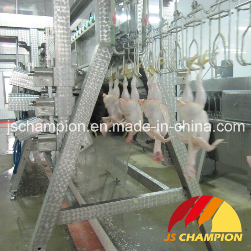 Poultry Precise Plucker for Poultry Slaughterhouse