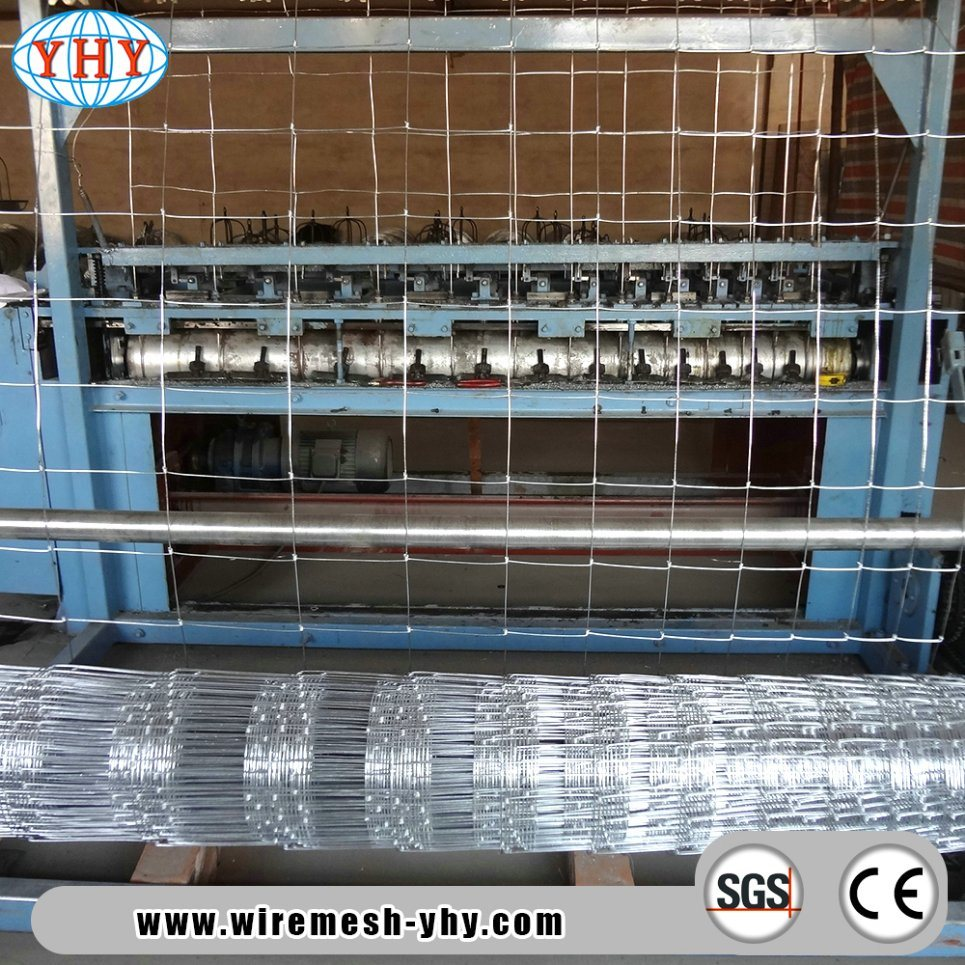 China 4′ High Page Wire Farm Fence for Sheeps and Goats Photos ...