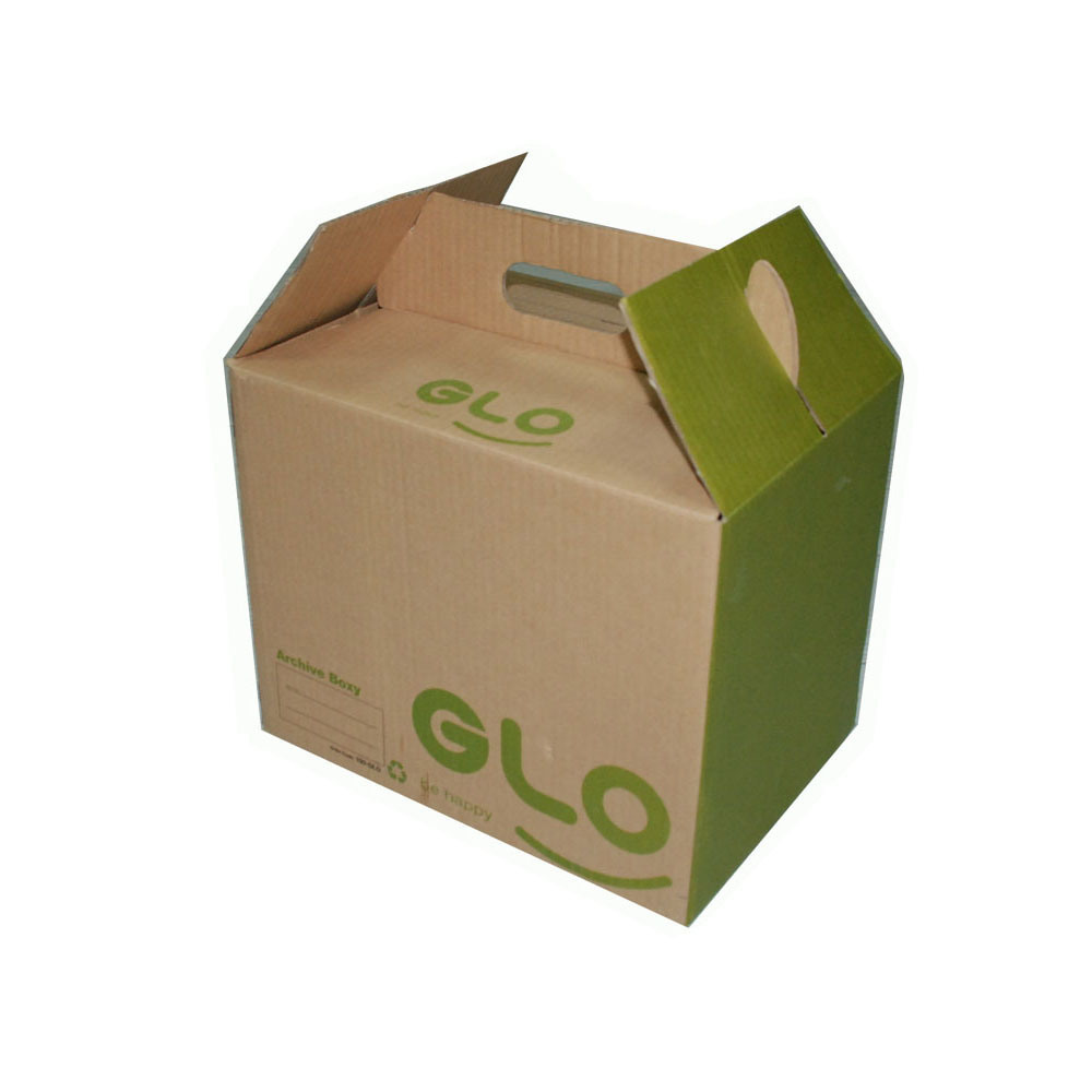 [Hot Item] Printing Paper Cardboard Box with Handle