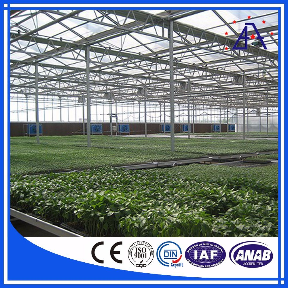 Aluminum Greenhouse for Agriculture Vegetables Farm