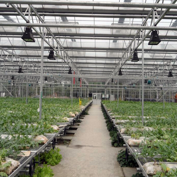 The China Flat Bed Hydroponics Vertical Hydroponics Plastic Hydroponics System pictures & photos