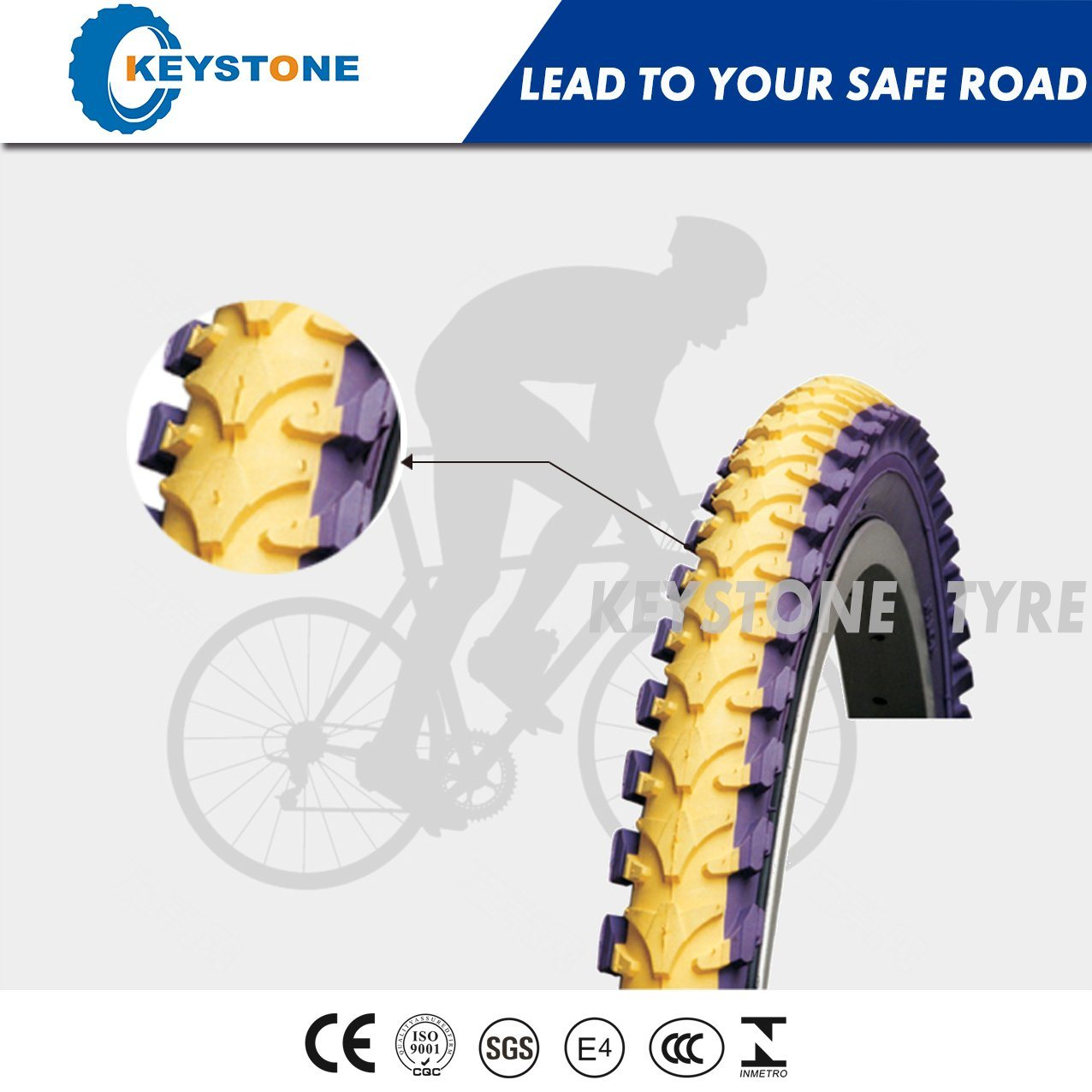 Top Quality with Euro Standard Bicycle Tyre (8