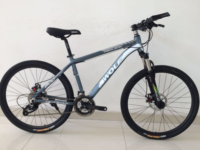 Aluminum Alloy 27 Speed Mountain Bike (MTB-019)