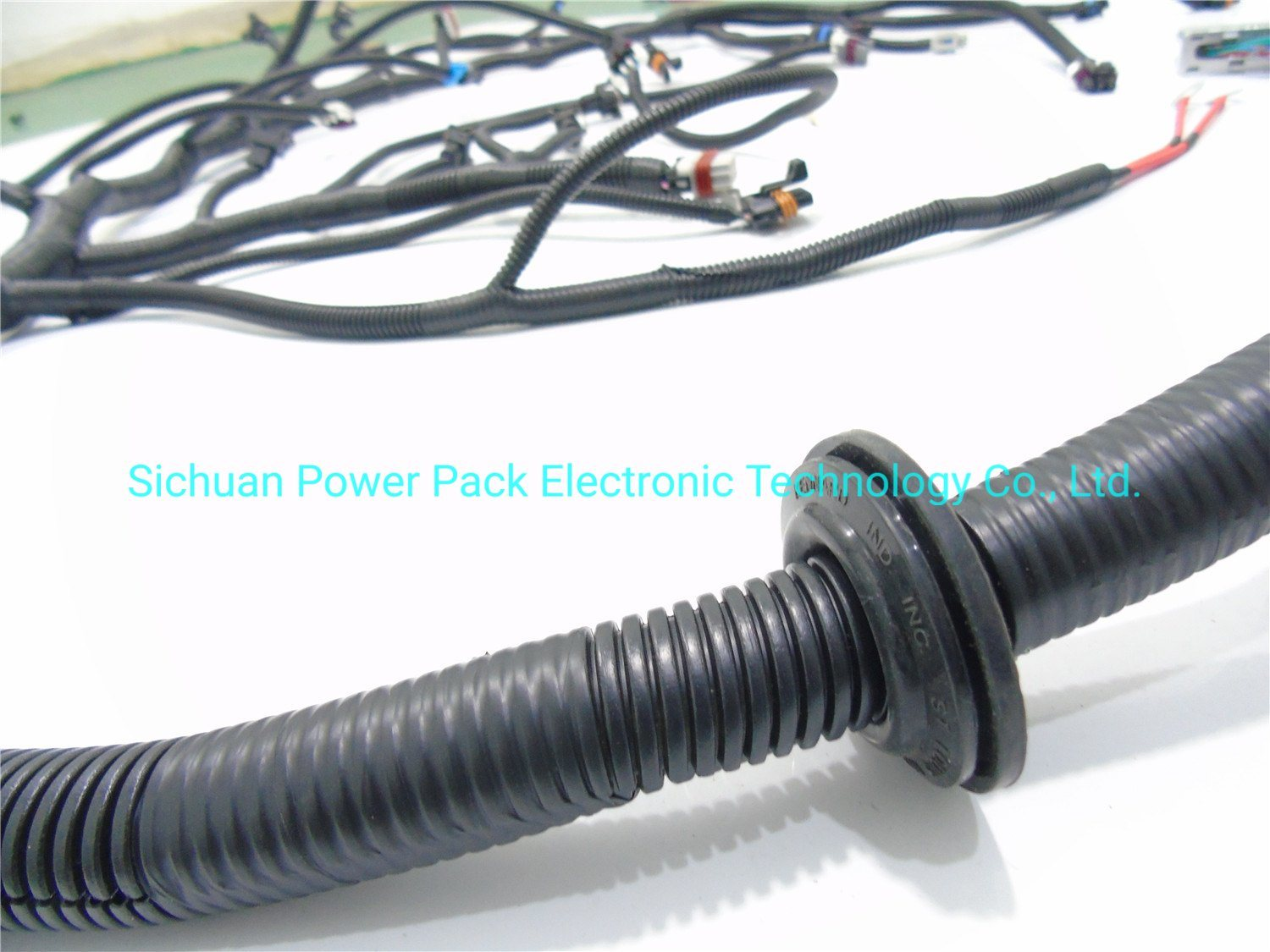 [DIAGRAM_5LK]  China 99 - 06 Vortec W/ T56 Standalone Wiring Harness (DBC) with Ls1 Intake  Photos & Pictures - Made-in-china.com | T56 Wiring Harness |  | Sichuan Power Pack Electronic Technology Co., Ltd.