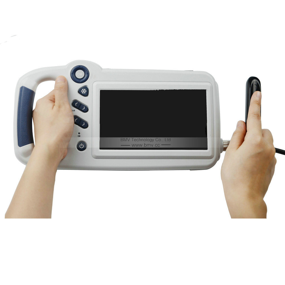 Farm Portable Ultrasound System L80 Veterinary Scanner