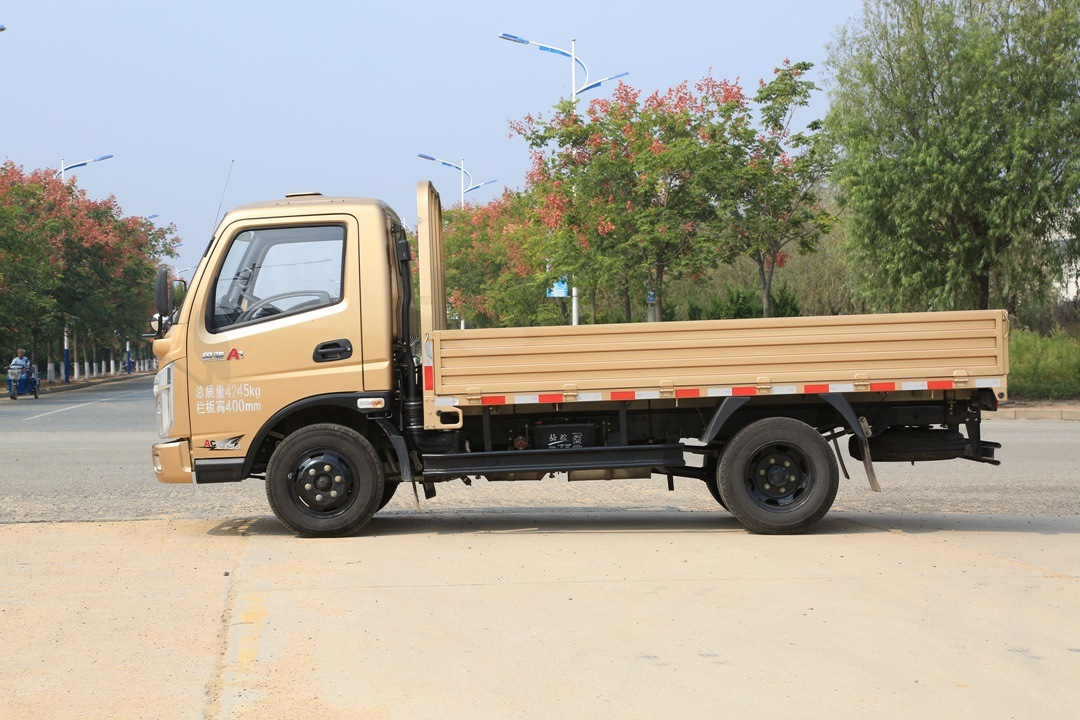 Light Truck with 1700mm Single Row Seat Cabin pictures & photos