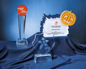 Customize Clear Acrylic Trophy Event Award Trophy