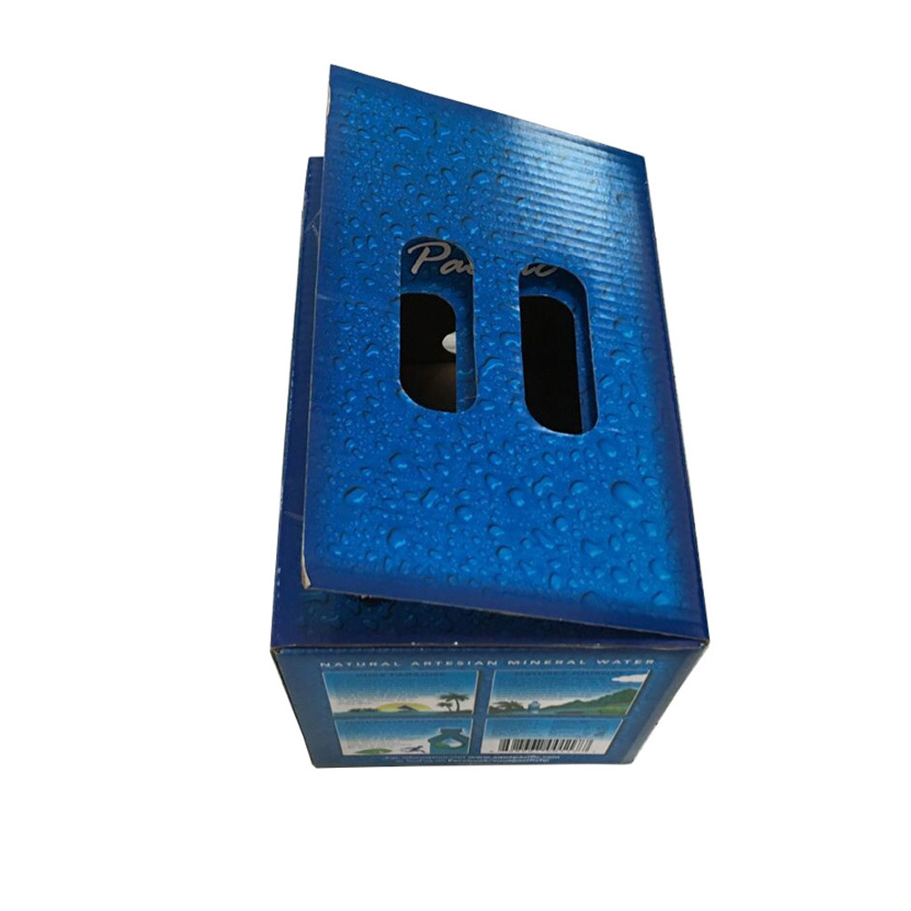Custom Printing Corrugated Liquid Packing Box with Handle pictures & photos