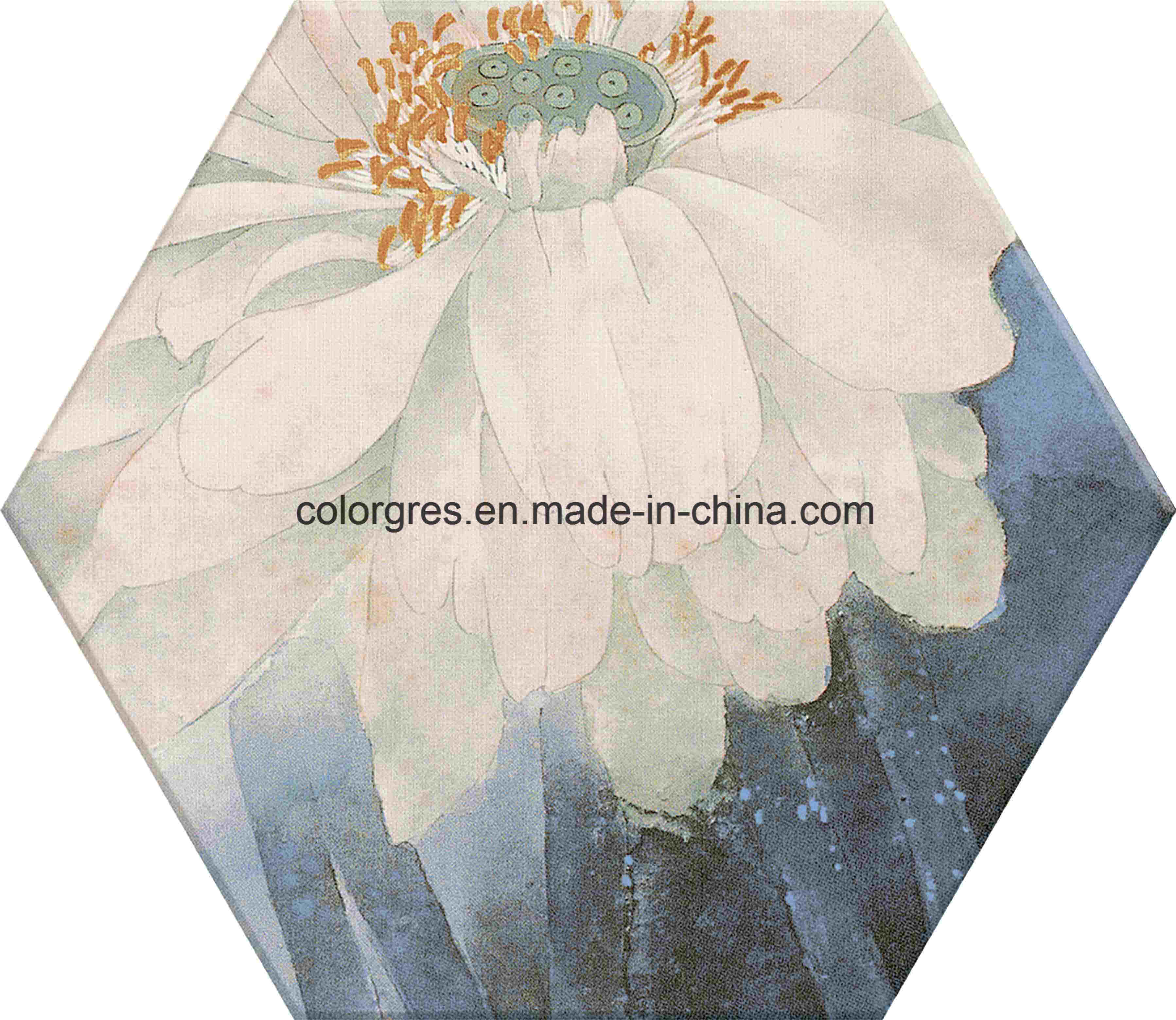 China garden decoration injected lotus flower design hexagon polygon garden decoration injected lotus flower design hexagon polygon ceramic floor tile 200230mm izmirmasajfo