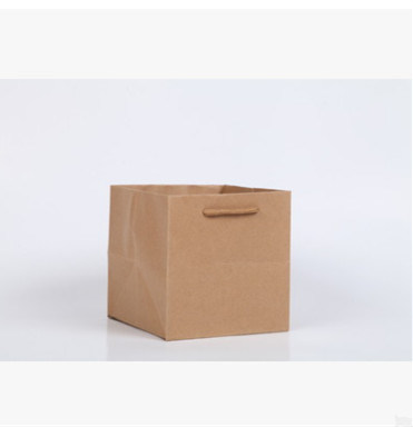 China Recycled Custom Design Luxury Shopping Brown Kraft Paper Bag