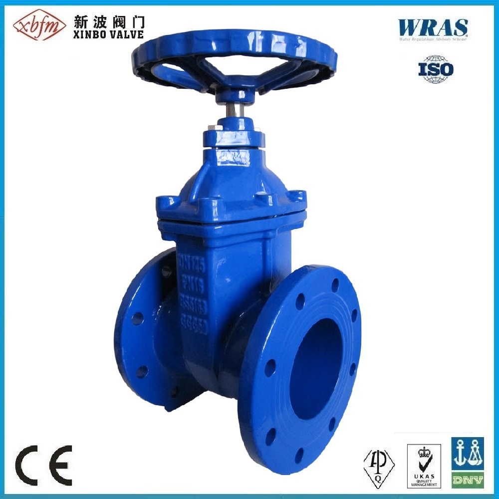BS5163 Ductile Iron Resilient Seated Gate Valve pictures & photos