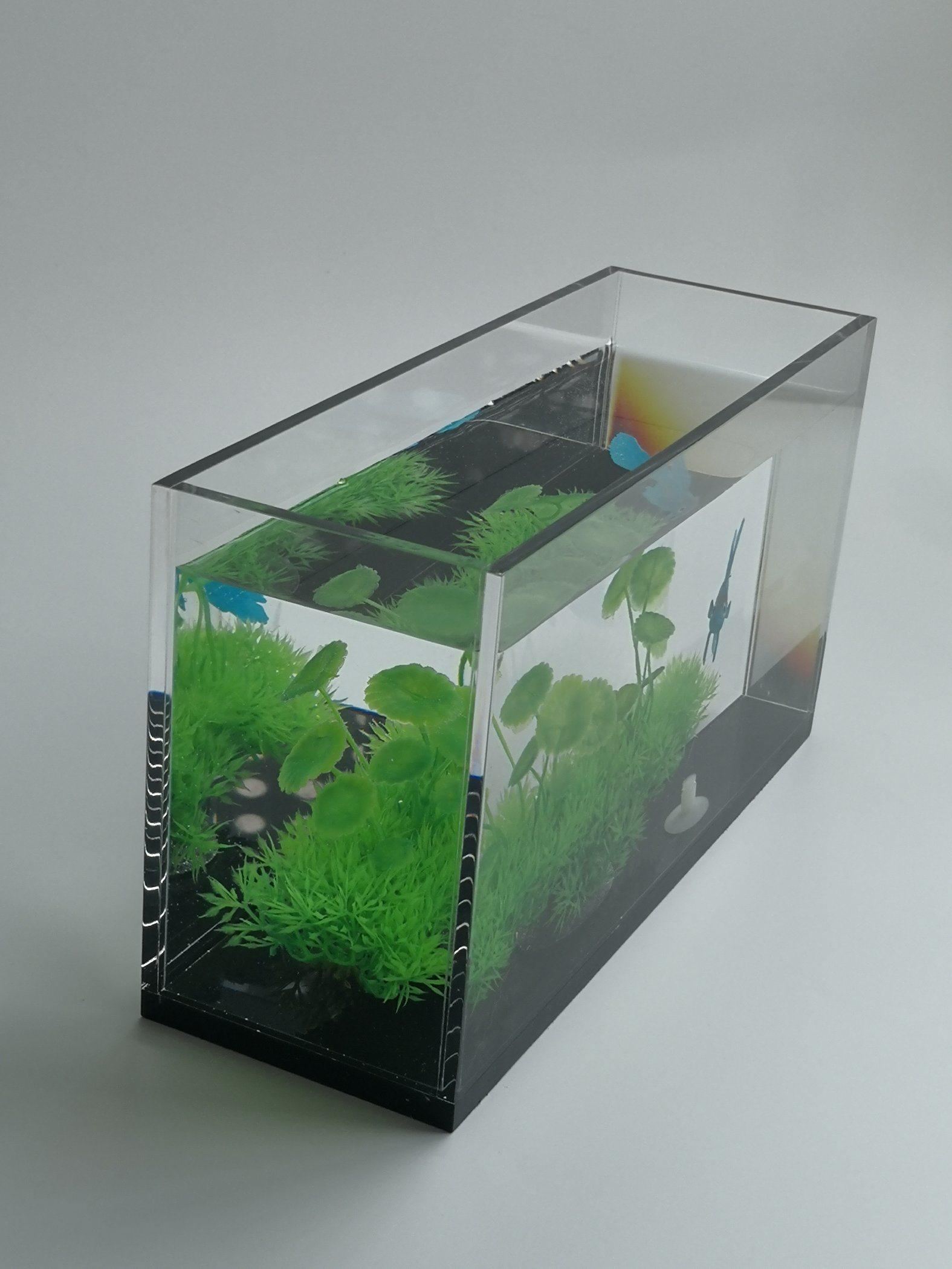 China 2020 Acrylic Fish Tank Bowl Aquarium Square Quadrate Fish Tank Mini Fish Tank China Acrylic Square Aquarium And Acrylic Aquarium Price