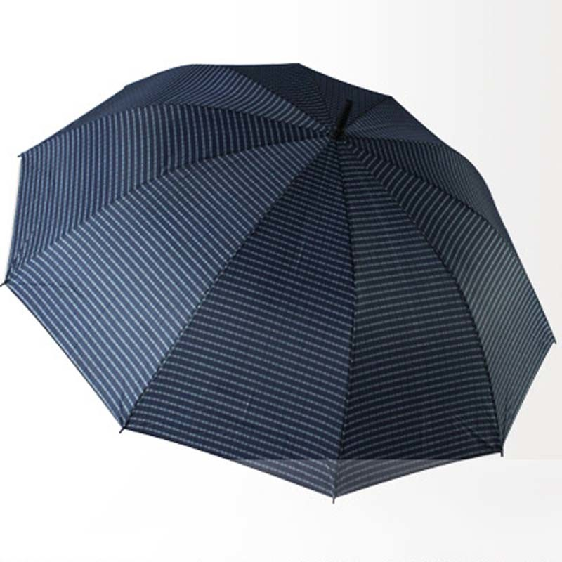 Hot Sale Windproof Umbrella for Promotion/ Advertising pictures & photos