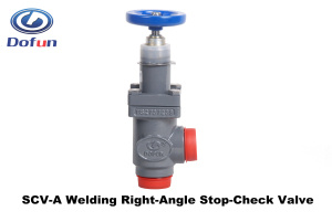Welding Ammonia Refrigeration Check Valve for Cold Storage  sc 1 st  CAS GYW Cold Chain System (Jiangsu) Co. Ltd. & China Welding Ammonia Refrigeration Check Valve for Cold Storage ...