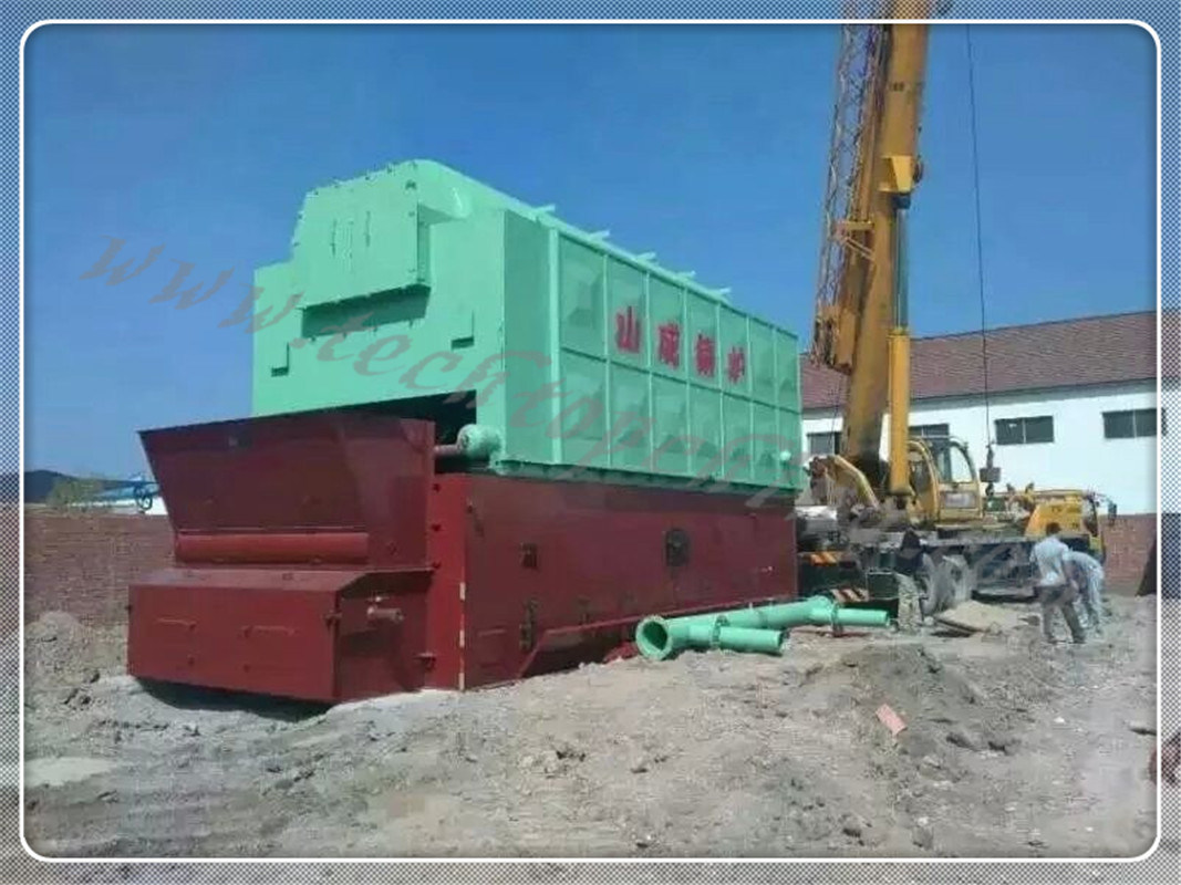 Biomass and Coal Fired Steam Boiler China Manufacturer Taishan ...