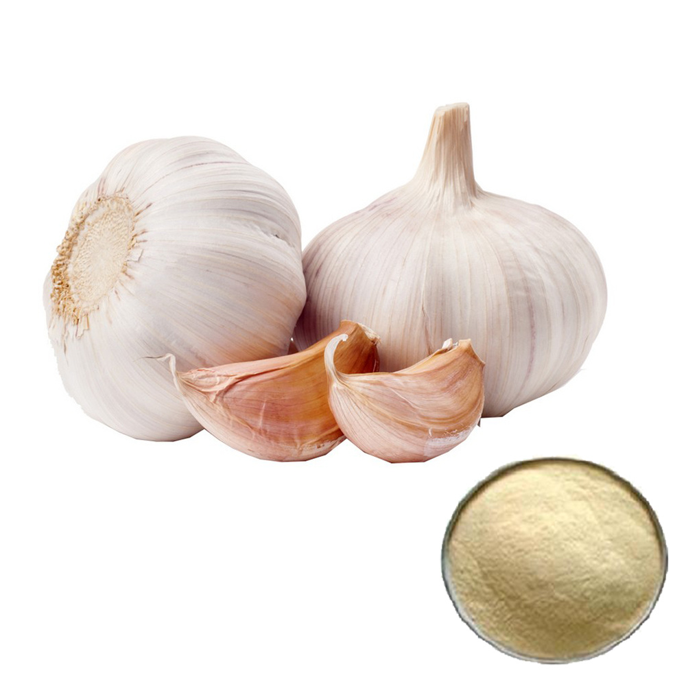 High Quality 10: 1 Allicin Garlic Powder Extract pictures & photos