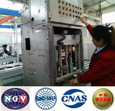 Zn63A Indoor Vacuum Circuit Breaker (fixed type) pictures & photos