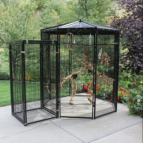 china galvanized and pvc coated welded wire mesh large zoo aviaries china acrylic birdcage. Black Bedroom Furniture Sets. Home Design Ideas
