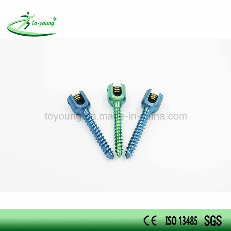 Spine Pedicle Screw