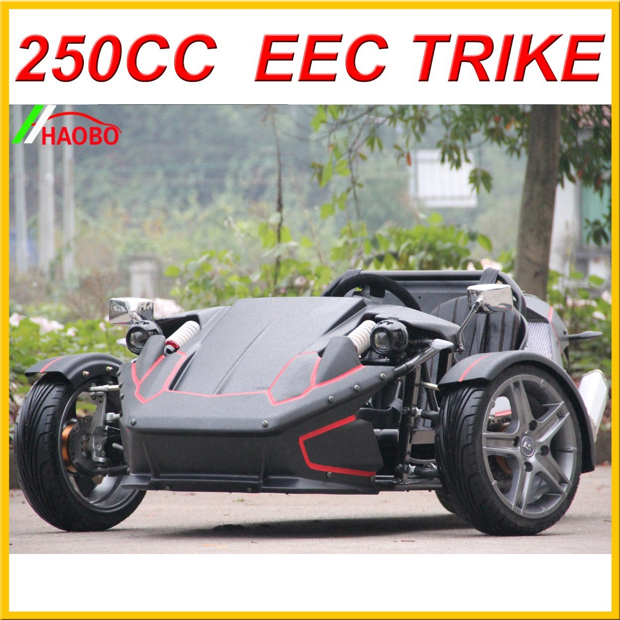 2017 Electric Trike for Adult