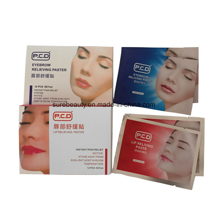 China Permanent Makeup Lip Numbing Cream Aftercare Products Lip