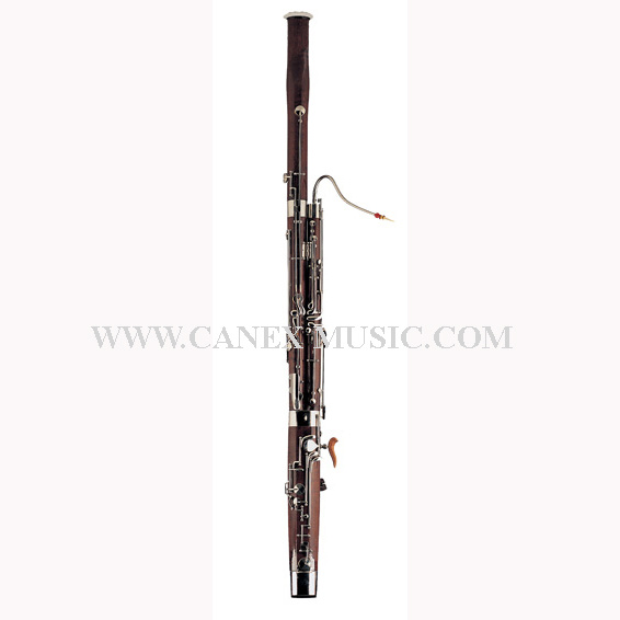 Bassoon / Wind Instruments / Musical Instruments