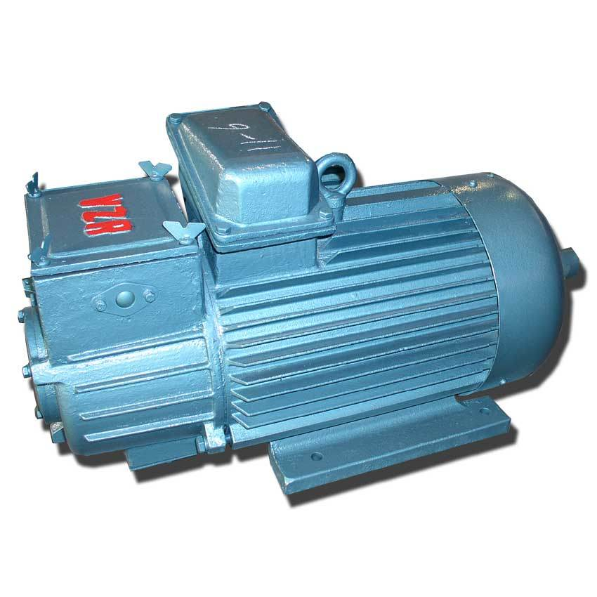 Electric Motor/ Hoisting Motor/ Crane Motor/ AC Motor pictures & photos