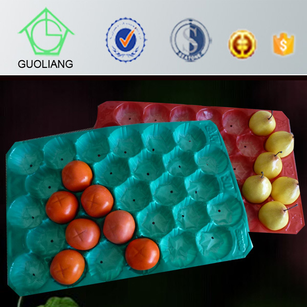 Made in China Costco Hot Sale Disposable PP Plastic Fruit Tray Packaging