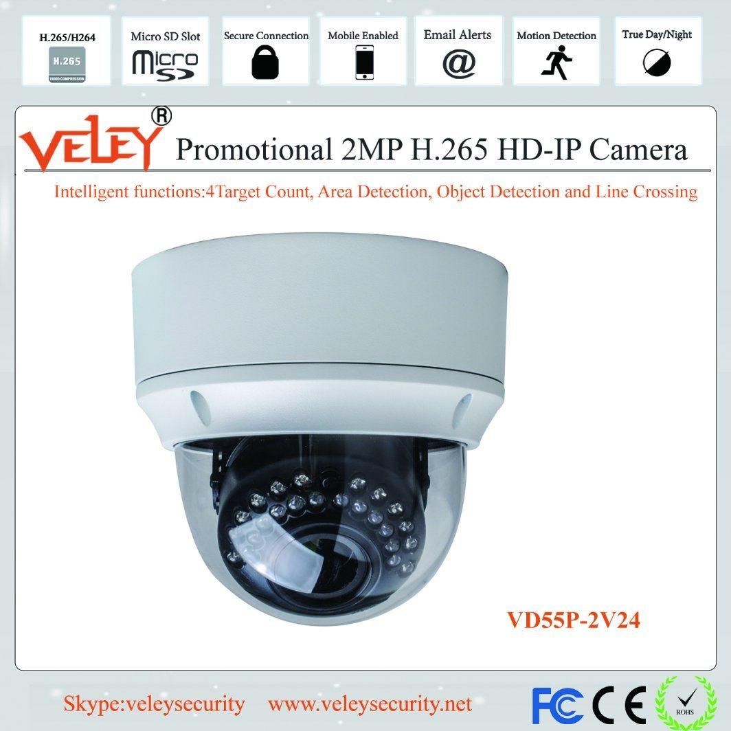 Bekend China Ik10 Vandalproof Security System IP66 Waterproof IP Dome SP94
