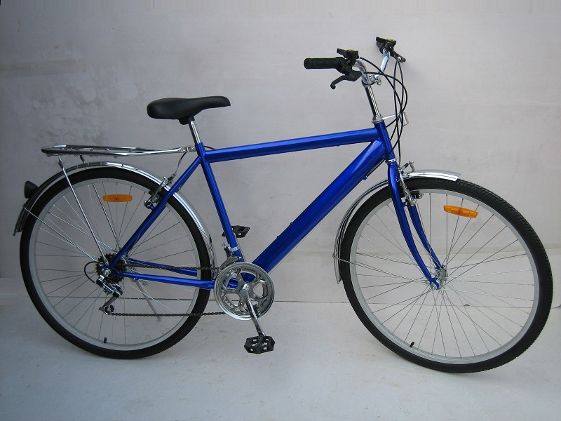 "28"" Adult Bicycle / 28"" Carrier Bike (TG2805)"