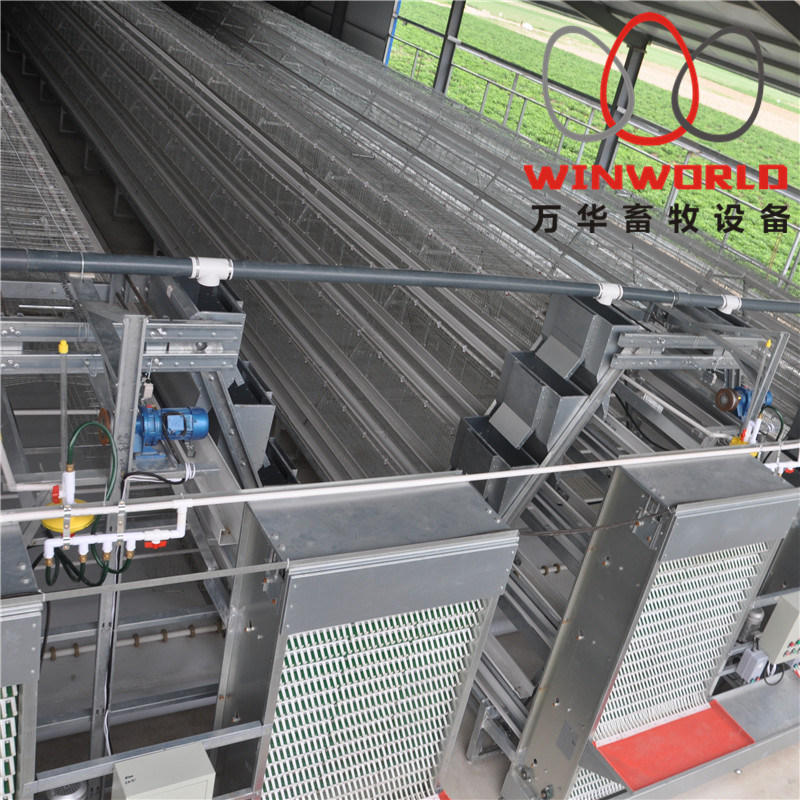 Modern Automatic Poultry Farm Equipment for Layer Chicken pictures & photos