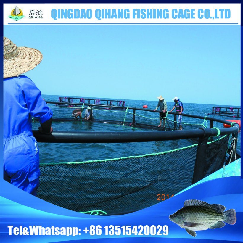 High Quality Floating Fish Net Seacages for Salmon Fish