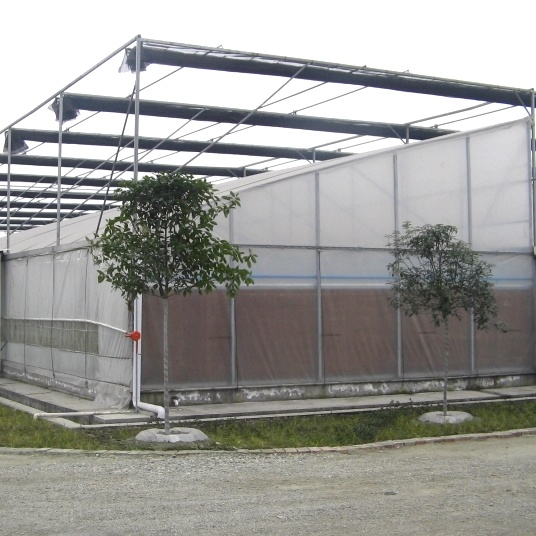 China Sawtooth Type Used Greenhouse Frames For Sale Plastic Film
