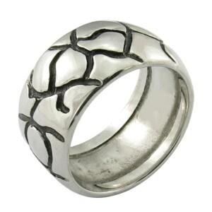 Gay stainless steel rings