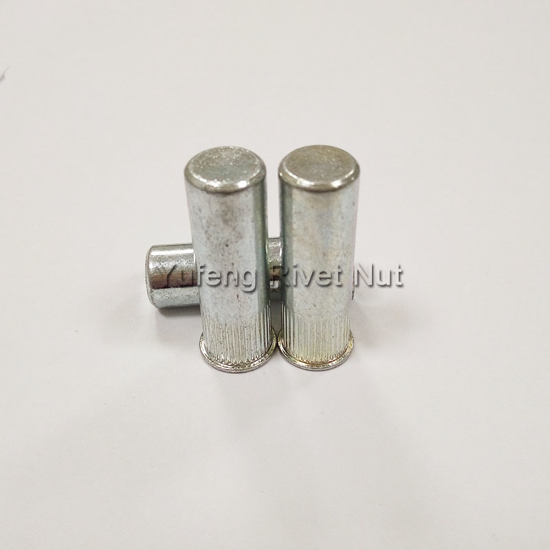 Zinc Plating Small Head Knurled Body Rivet Nut with Closed End