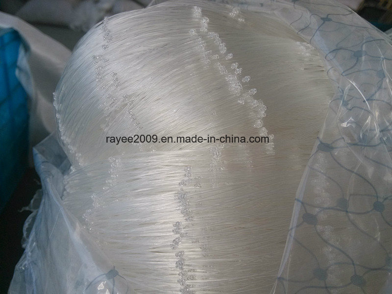 EU USA Markets Virgin Agricultural Anti Bird Net Balcony Net pictures & photos