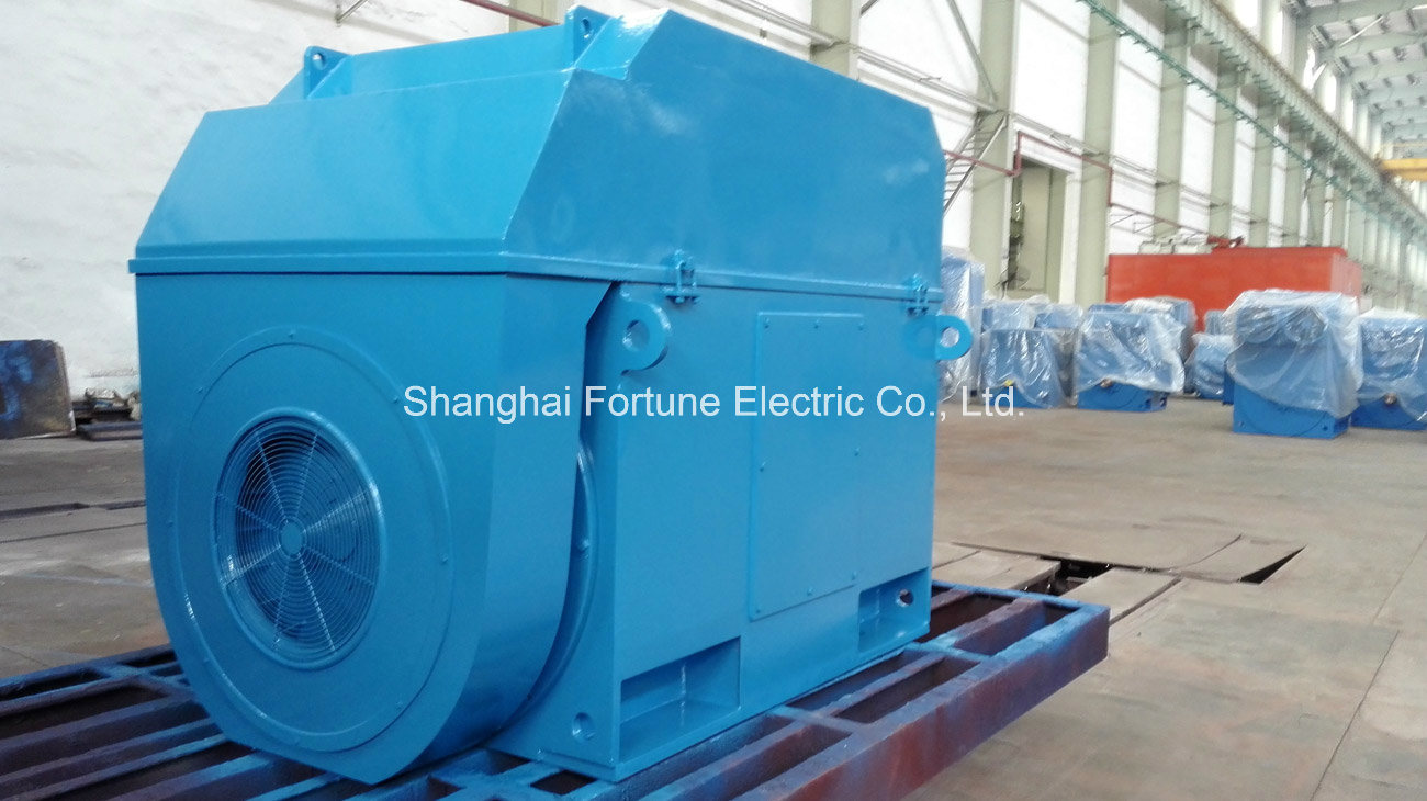Big Size Three Phase Squirrel Cage Asynchronous Induction AC Motor