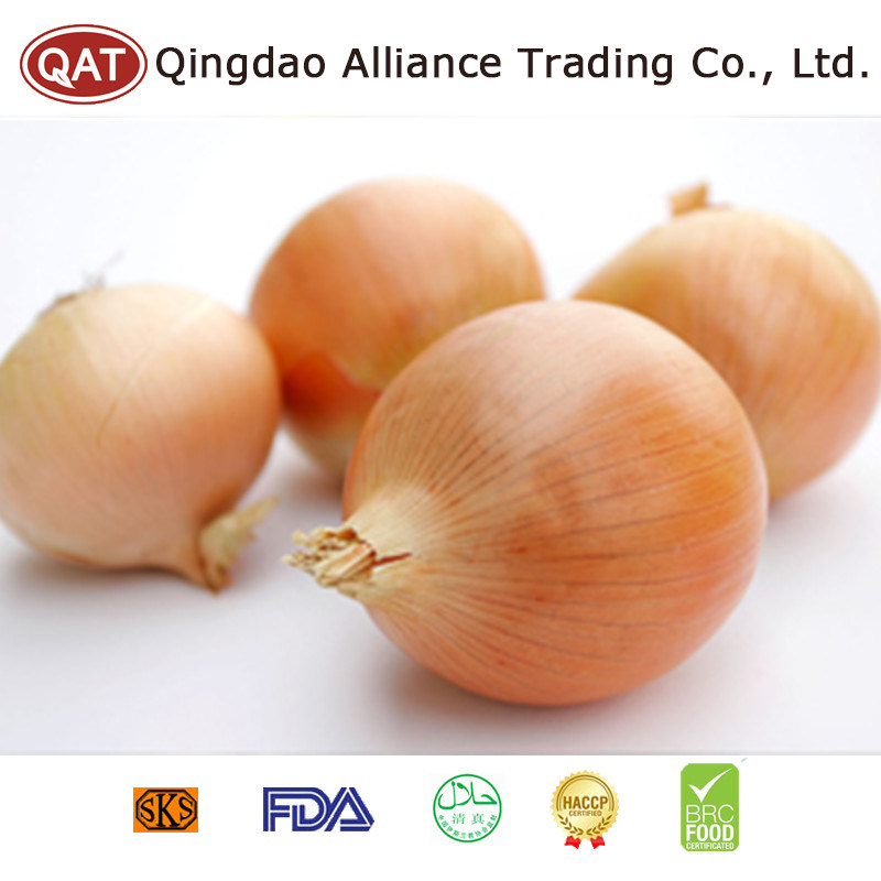 Fresh Yellow Pearl Onion with Export Standard pictures & photos