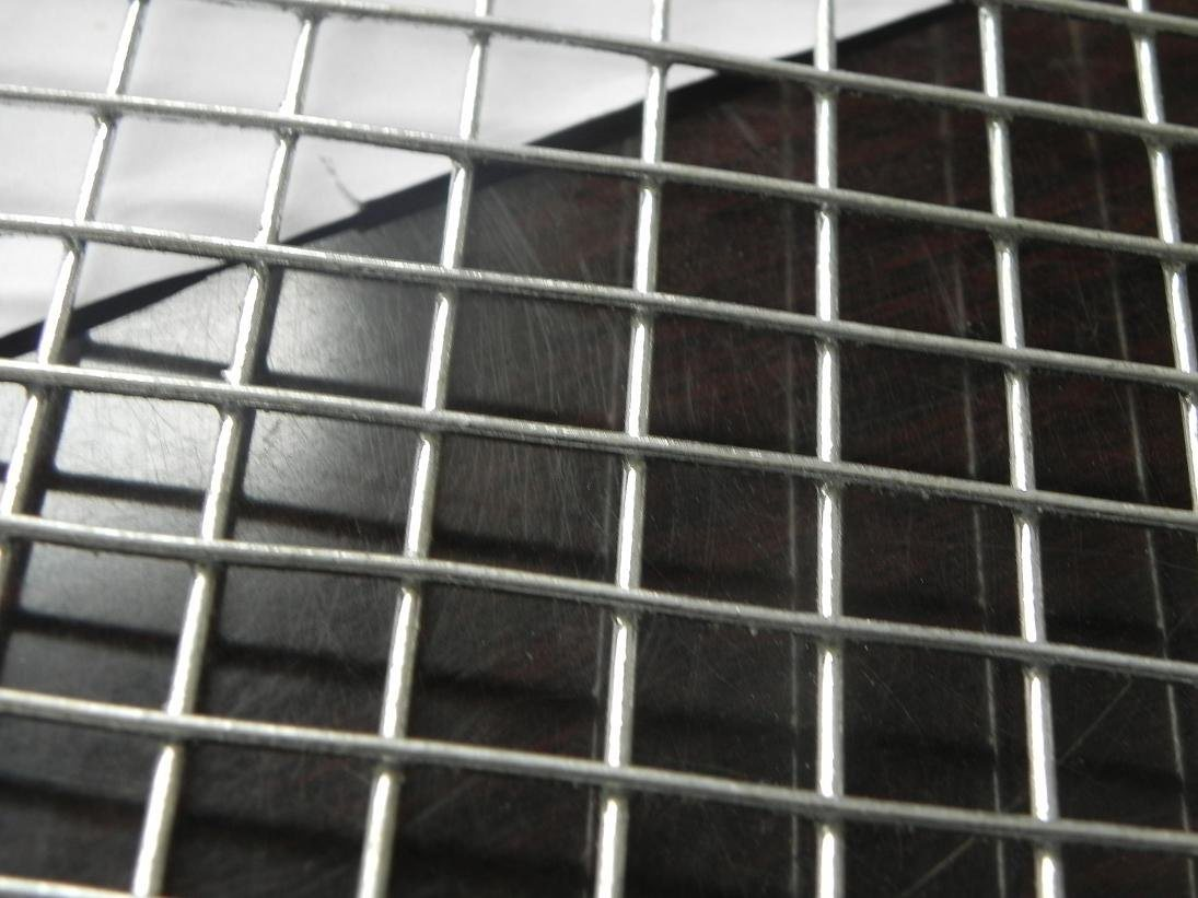 China High Security Hot-Dipped Galvanzied Iron Welded Wire Mesh ...