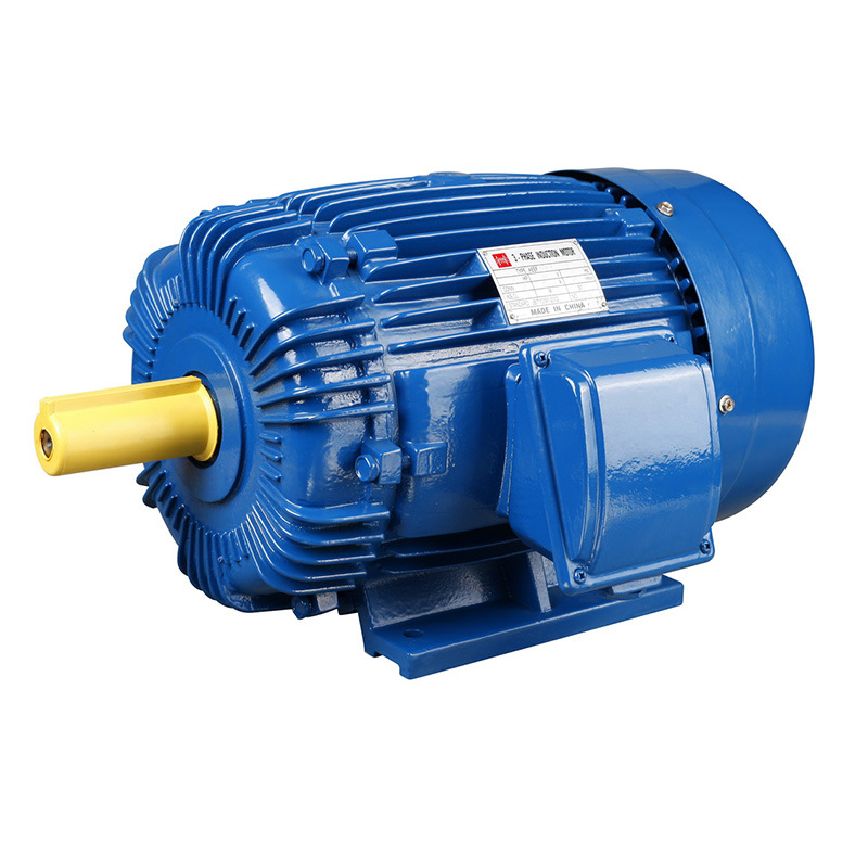 IEC Standard Three-Phase Induction Motor pictures & photos