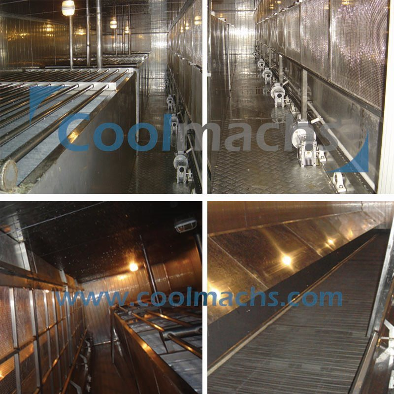 Fluidized IQF Freezer for Vegetables Fruits Sweet Corn Beans Carrot
