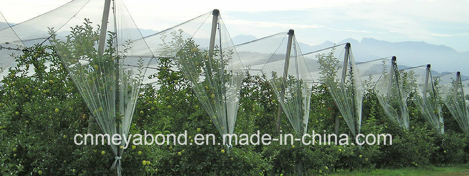 Hail Netting Structures