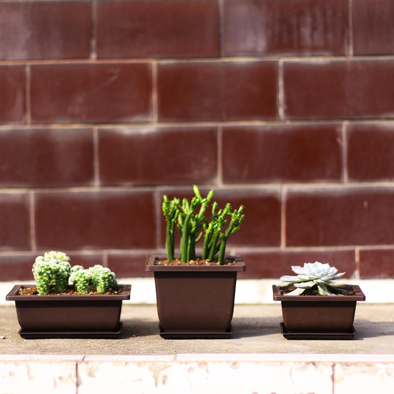China 12 Cm Garden Plastic Pot Violet