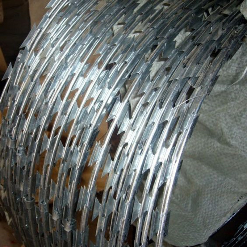 China Hot-Dipped Galvanized Security Protected Razor Barbed Wire ...