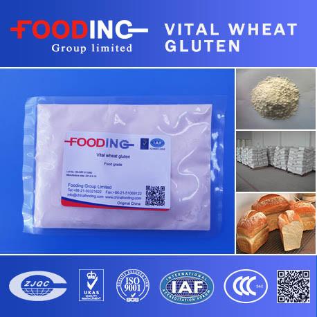 China Natural Vital Wheat Gluten 75% - China Food Grade