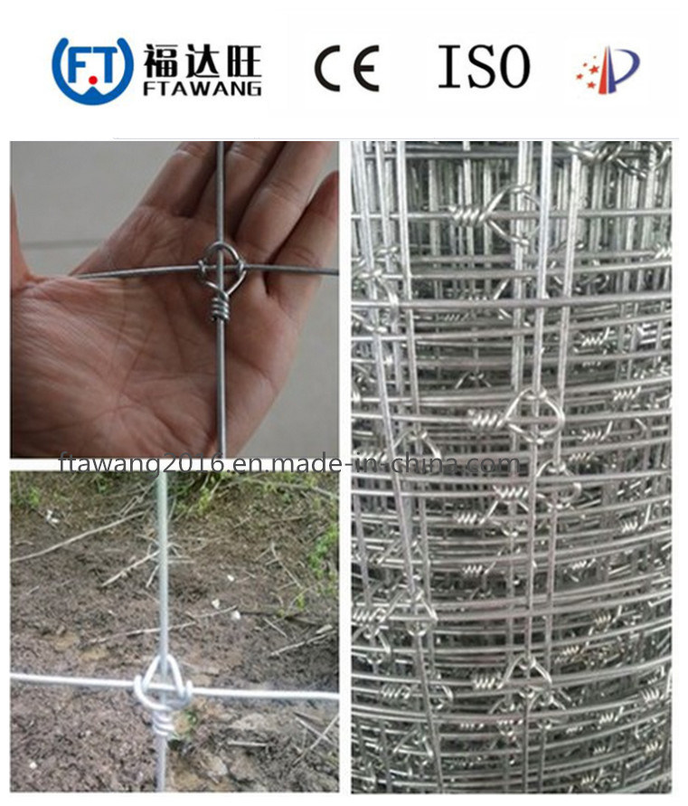 China Galvanized Wire Mesh Fence/Sheep Cattle Wire Fence - China ...