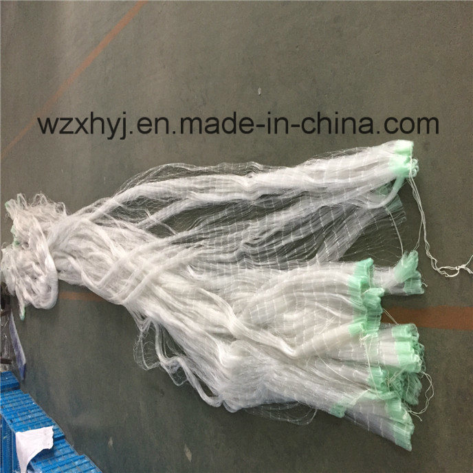 0.50mmx60mmsqx48mdx100m Nylon Monofilament Fishing Net pictures & photos