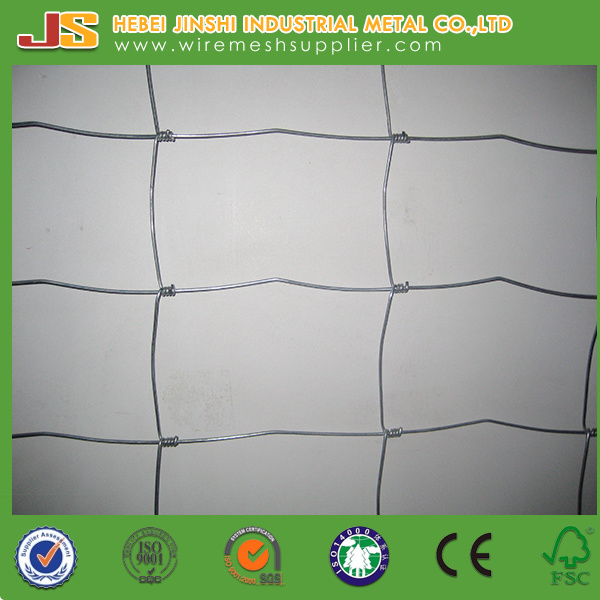 China Hinge Joint Field Fence Wire, Goat Wire Fence Photos ...