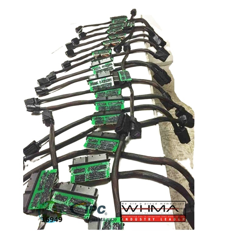 China ECU Wire Harness for Bosch ECU Wiring Harness - China Car  Accessories, Electric WireEdgar Auto Harnesses Ltd.